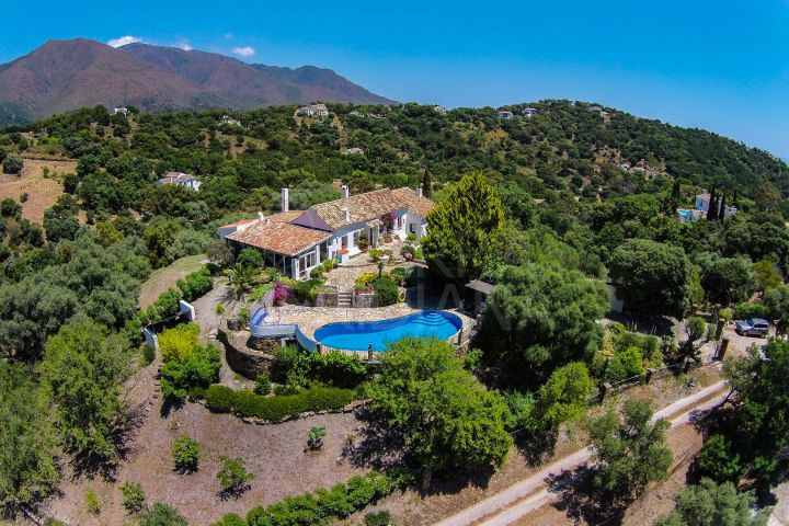 Beautiful finca with olive grove for sale in Casares, Málaga, Andalucia