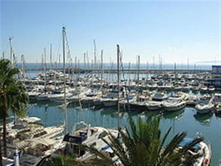 Estepona, FANTASTIC BUSINESS OPPORTUNITY IN THE PORT, ESTEPONA