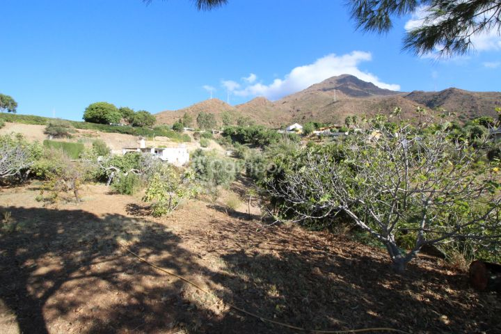 Estepona, Country house with fantastic land for sale in Los Pedregales, Estepona