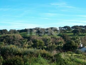Flat plot in zone F, with views of the Golf of San Roque Club and south orientation