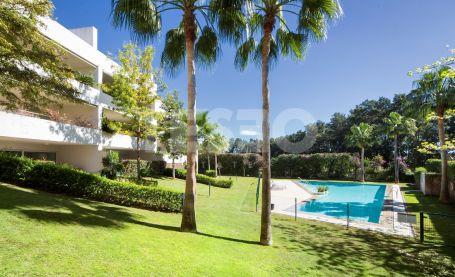 Bonito apartamento en planta baja orientado al SUR en POLO GARDENS con jardines comunitarios, piscinas, spa, gimnasio y pista de padel.