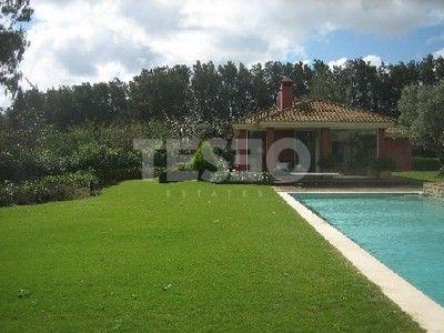 Cosy Villa in Kings and Queen