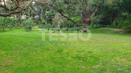 Magnificent plot on prestigious Paseo del Parque