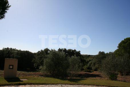 Large Plot for sale in Los Altos de Valderrama, Sotogrande