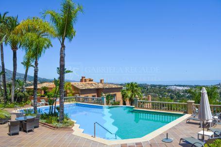 Renovated apartment with panoramic sea views