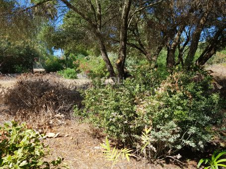Plot for sale in a consolidated urbanization