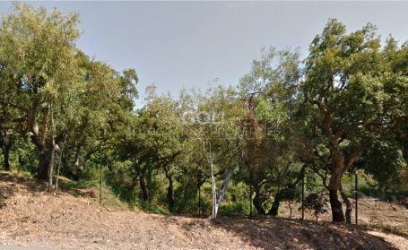 Plot near La Reserva Golf Course