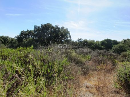 Well situated plot in Los Altos de Valderrama