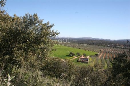Land with 700m2 ruin in Ronda