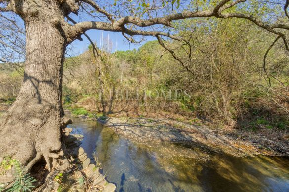 Finca of 40 hectares in the Bay of Roses (Costa Brava)