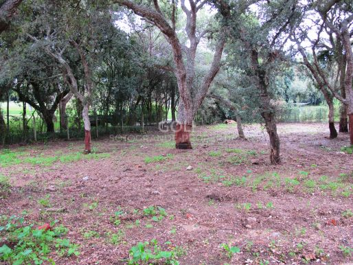 Plot for sale in an excellent location