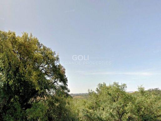 Plot for sale in La Reserva de Sotogrande