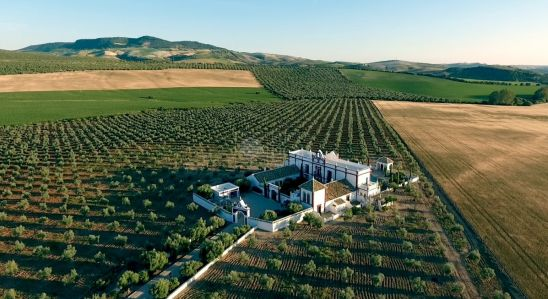 Hotel en venta en Ronda