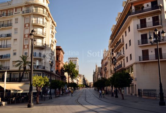 Apartment on Avenida de la Constitución with parking place, for Long Term Rental.