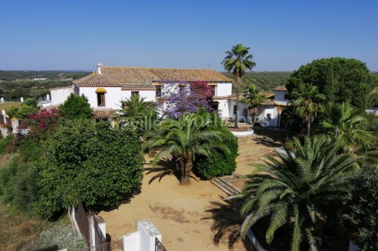 Estate in the Sevillian municipality of Gerena