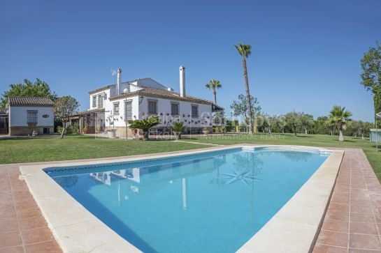 Recreation, equestrian and olive grove property in the Province of Seville