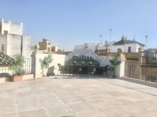 Rent Duplex penthouse in Mateos Gago, with large terrace.