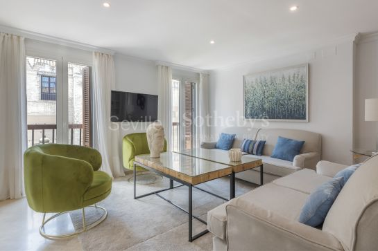 Unfurnished apartment in the center of Seville, with impressive views of the Cathedral and the Giralda and a large terrace for community use.