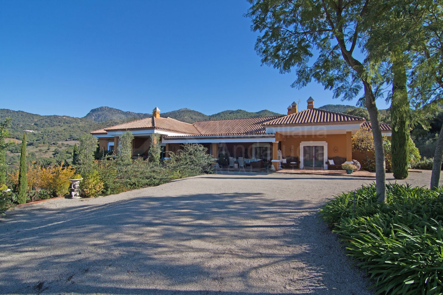 Unique country house with vineyard for sale in the stunningly beautiful area of Gaucin