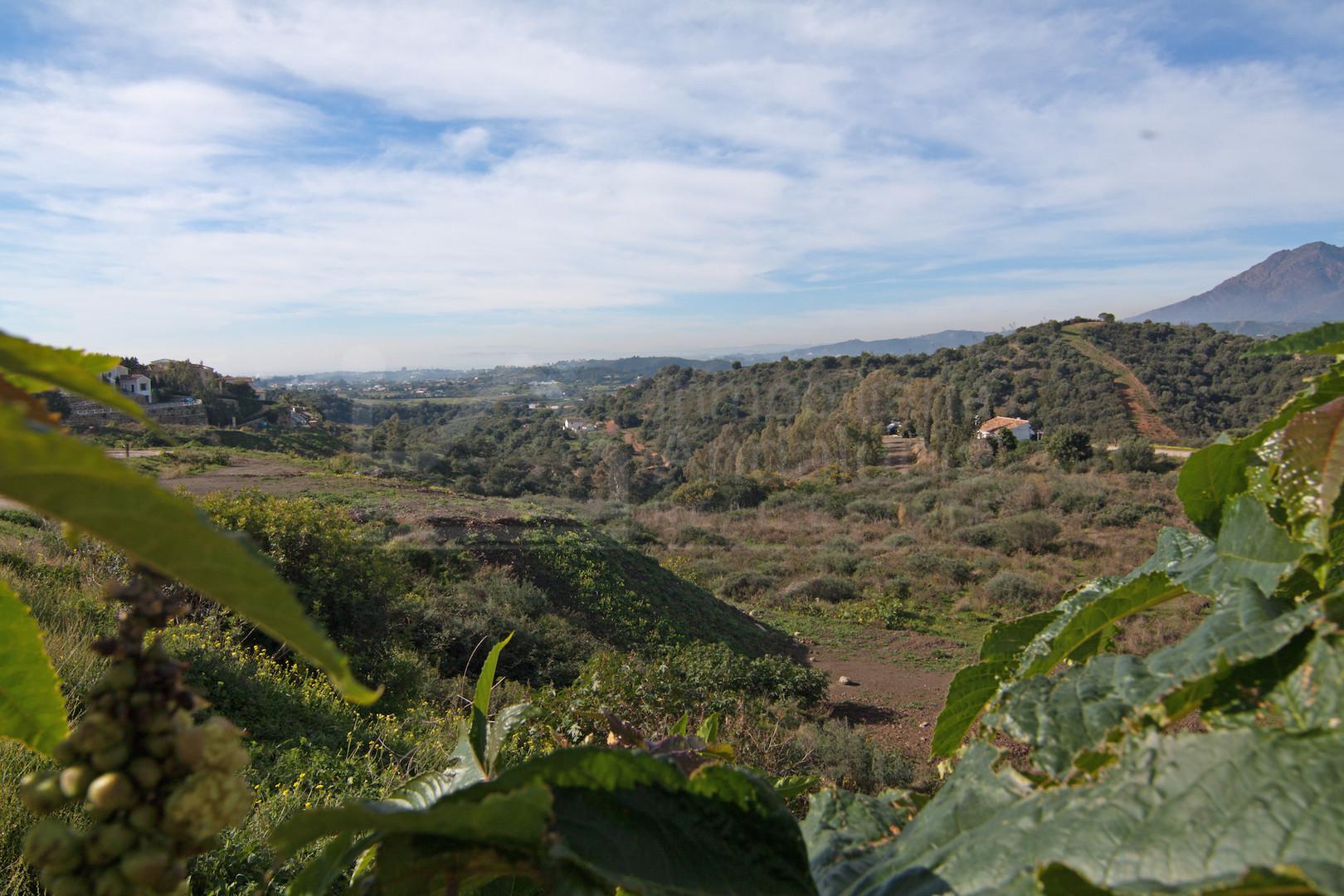 4.891m2 villa building plot for sale in Estepona