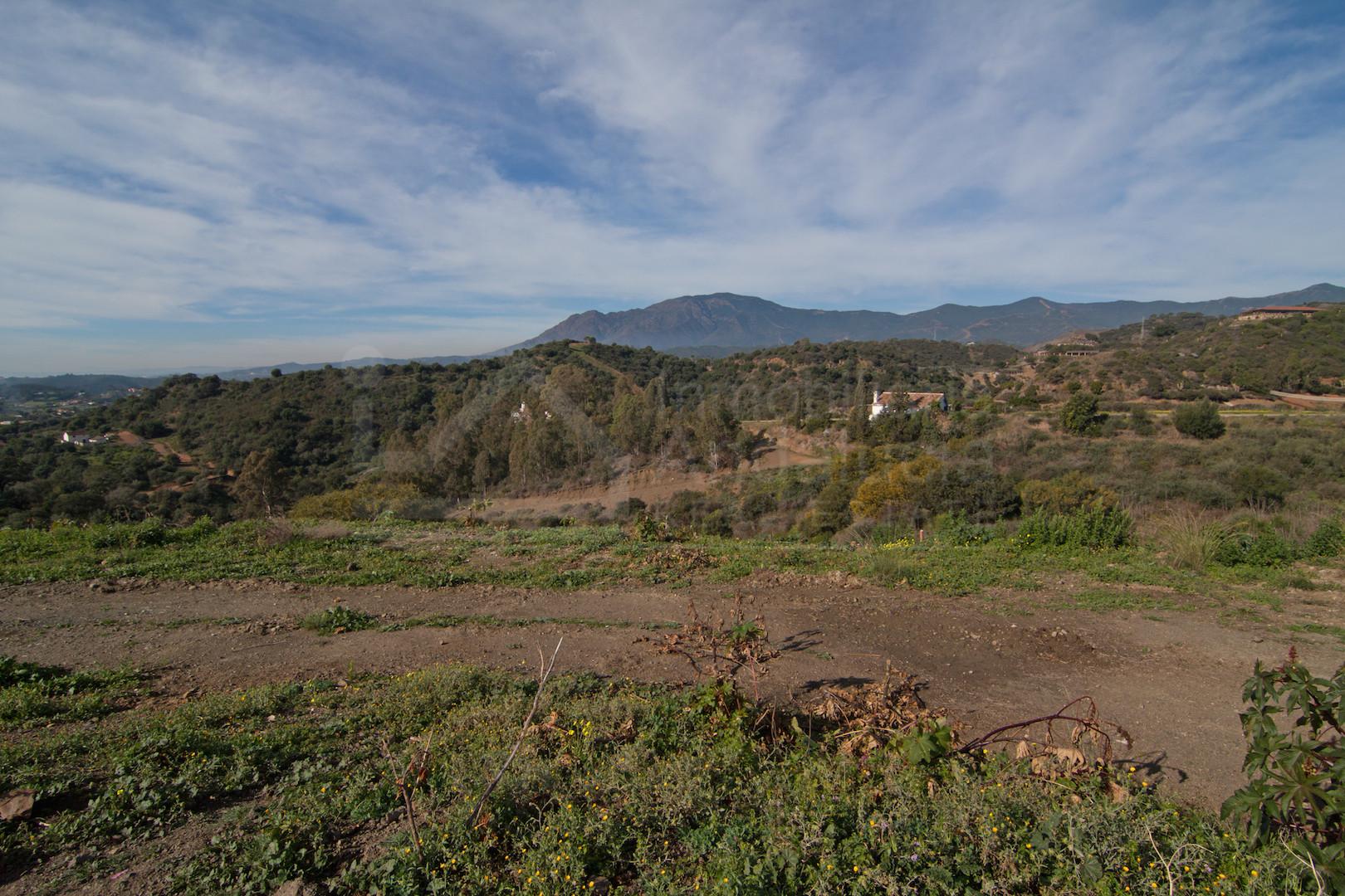 5.106m2 villa building plot for sale in Estepona