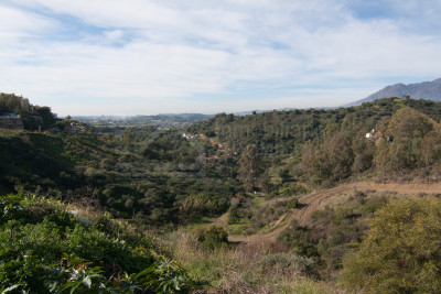 Estepona, 4.123m2 villa building plot for sale in Estepona