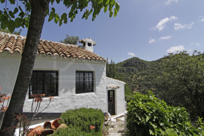 Casares, Unique 8 bedroom country house ideal for B&B business for sale in Casares