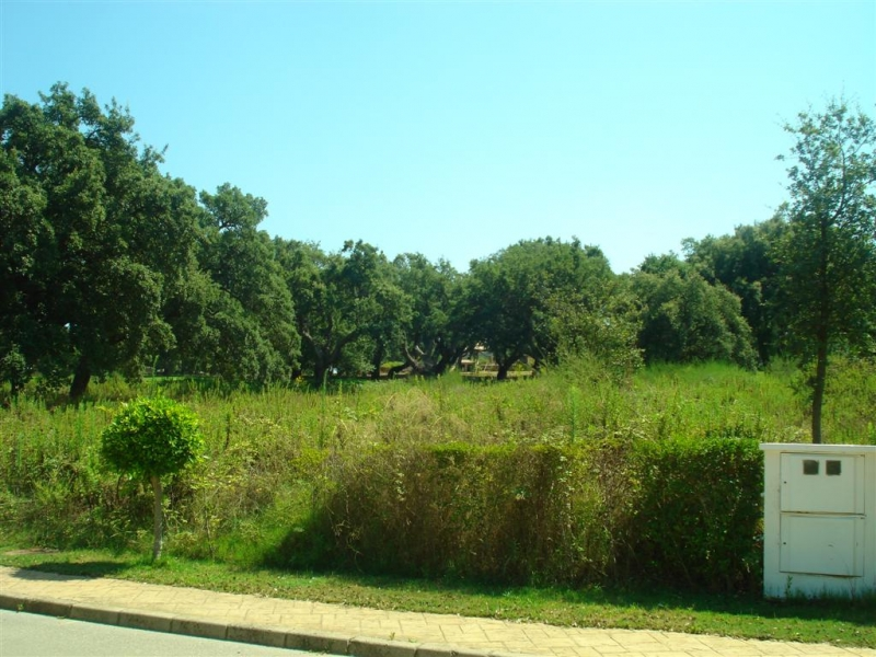 Plot for Sale in San Roque Golf, San Roque