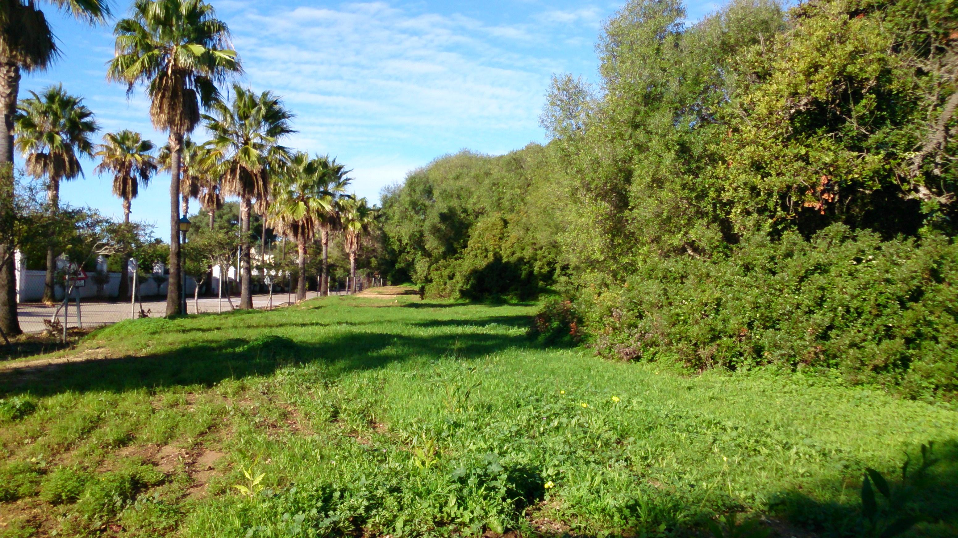 Plot for Sale in Sotogrande Alto, Sotogrande